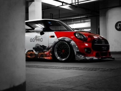 Mini airsociety wide-body photo